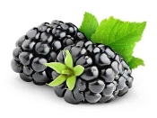 """BLACKBERRY"" E-LIQUID"